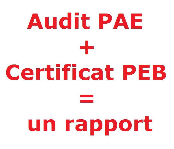 Audit énergétique PAE et certificat énergétique PEB réunis dans un seul rapport